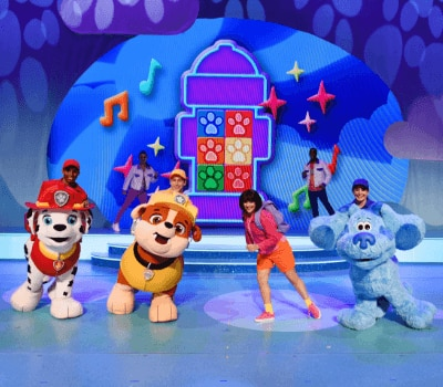 Image result for nick jr live""